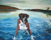 Portrait of Boxer Dog